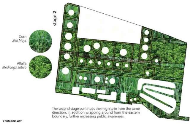 Planting Stage 2