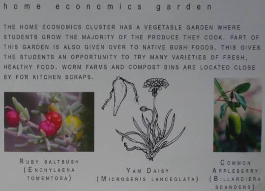 Home Economics Garden