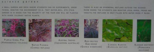 Science Garden Plants