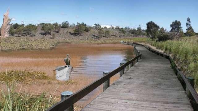 Render of Wetlands