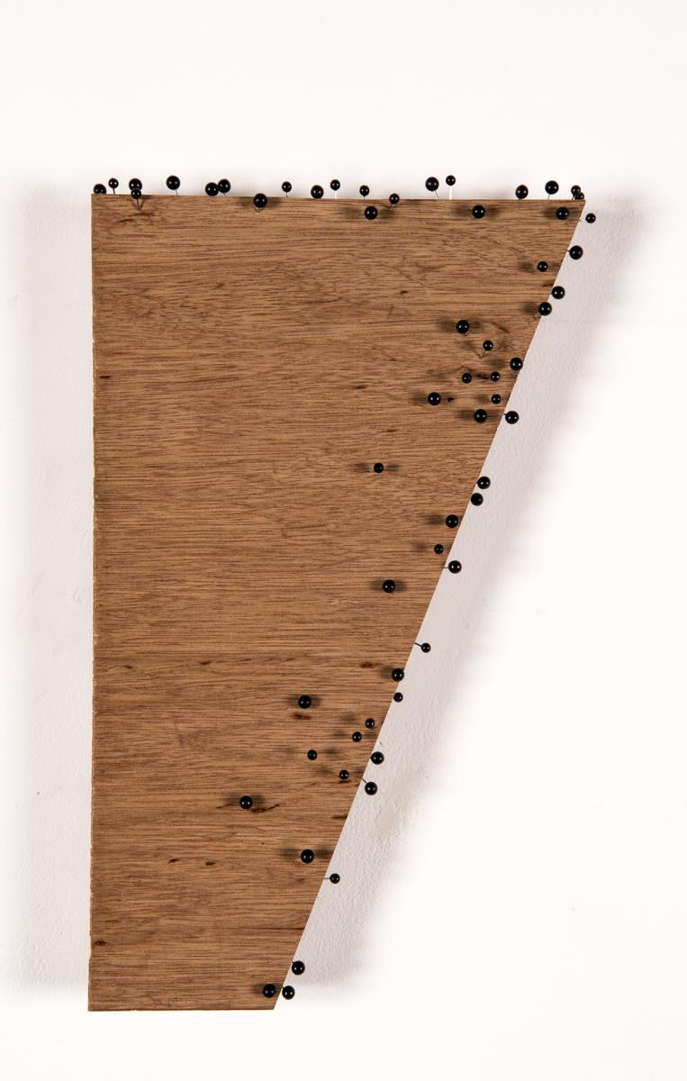 western planes pinboard (black) 2011