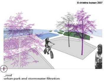 Roof: urban park and stormwater filtration