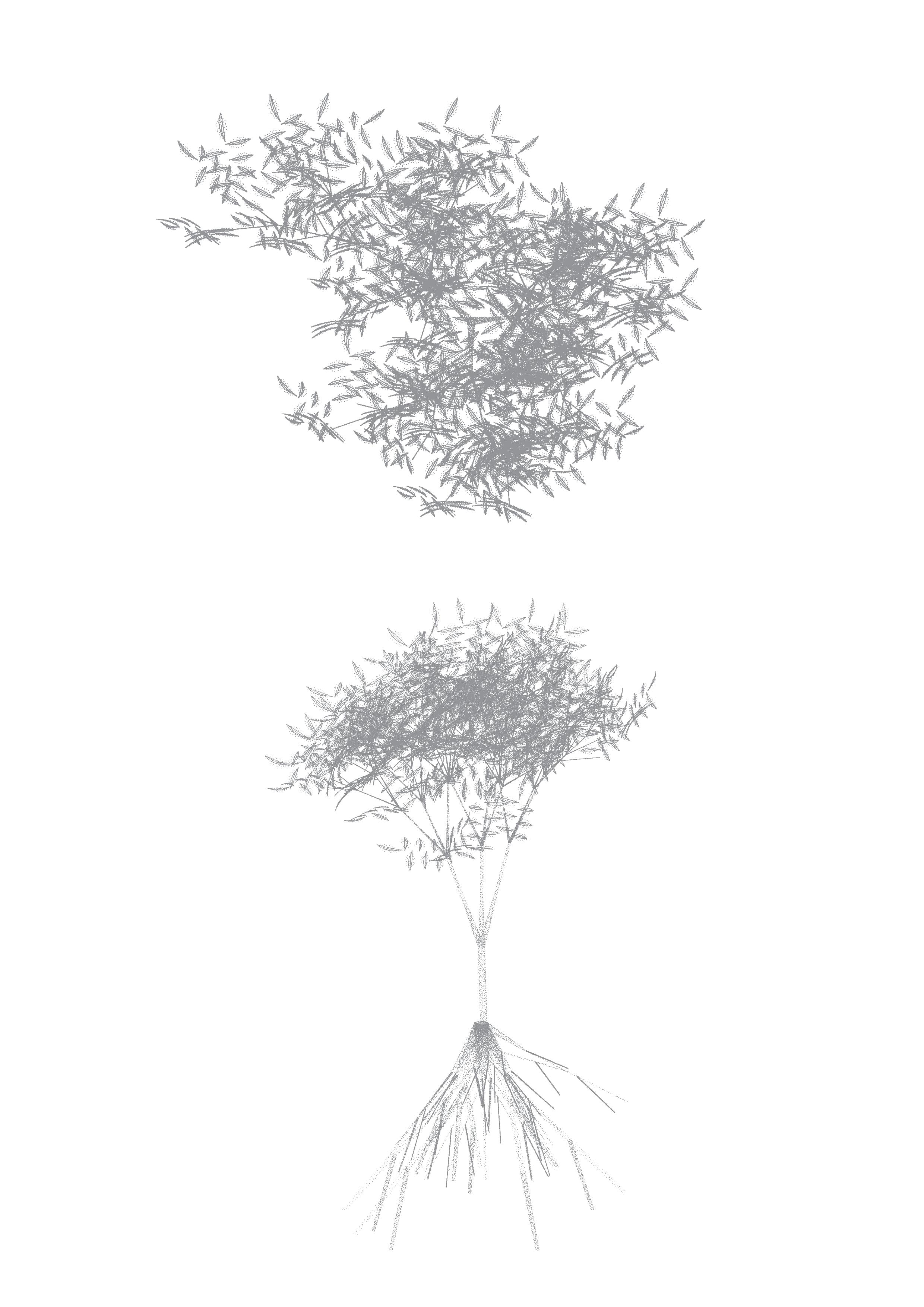 Species Overlay