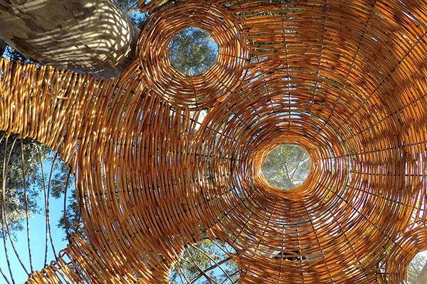 Bamboo installation structure